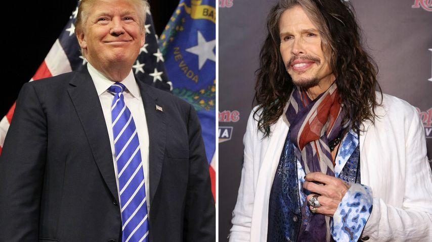 Träum weiter! Donald Trump bekommt Absage von Steven Tyler