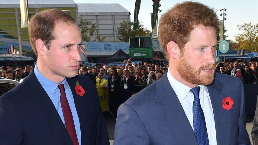 """Prinz William lästert: """"Prinz Harry ist ein Schnorrer!"""""""