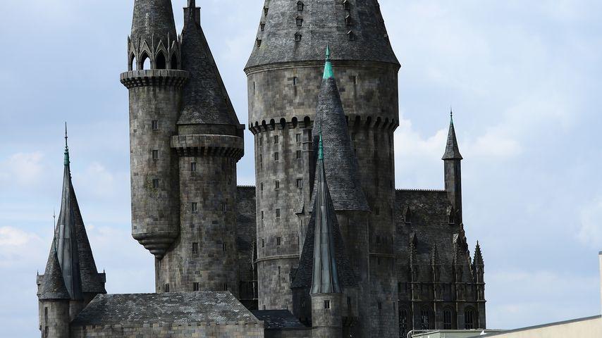 """""""Harry Potter""""-Park: Fahrgeschäft bringt Gäste zum Brechen"""
