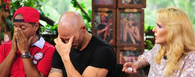 Thorsten Legat, Helena Fürst und Ricky Harris bei der Dschungelcamp-Reunion 2016