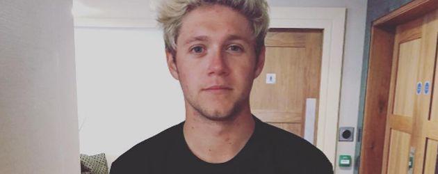 Niall Horan, Sänger