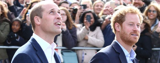 Prinz Harry und Prinz William auf dem Weg zur County Hall in London
